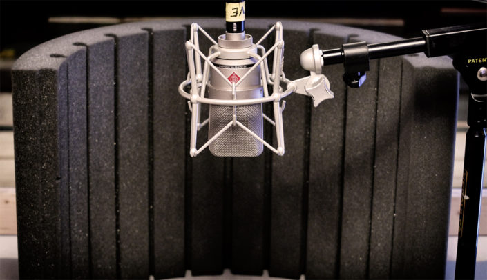 Neumann TLM103 mic screen
