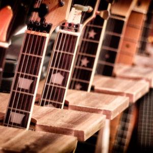 More Guitars 2